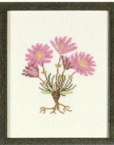 〔Fremme〕 刺繍キット 30-2970_05