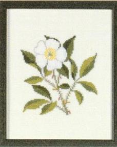 〔Fremme〕 刺繍キット 30-2970_12