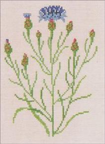〔Fremme〕 刺繍キット 30-4317L <5月のおすすめキット>