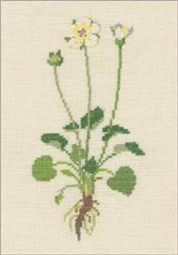 〔Fremme〕 刺繍キット 30-4317O