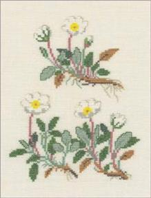 〔Fremme〕 刺繍キット 30-4317S
