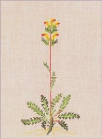 〔Fremme〕 刺繍キット 30-4317T
