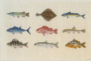 〔Bahmann〕 刺繍キット B30-9007