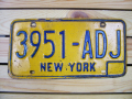 Used License Plate★NEW YORK/ニューヨーク★3951-ADJ