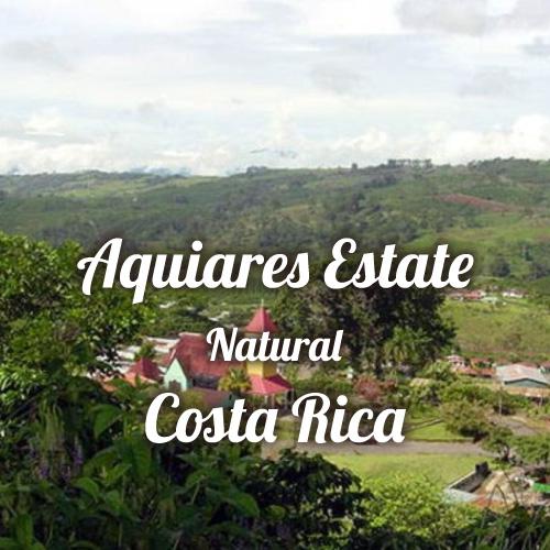 コスタリカ アキアレス農園 ナチュラル