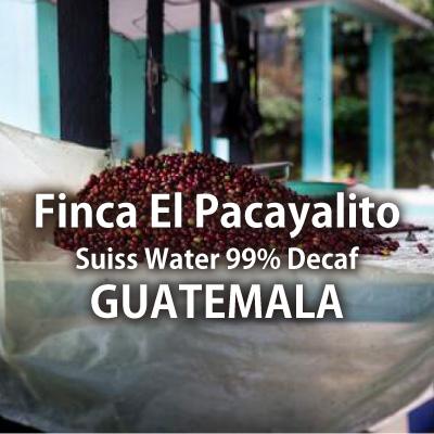 【デカフェ】グァテマラ パカヤリト農園 カフェインレス/100g