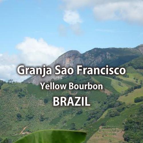 【トップスペシャルティ】ブラジル グランハ・サン・フランシスコ農園 イエローブルボン
