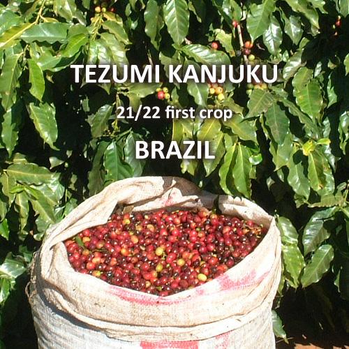 ブラジル 手摘み完熟豆 21/22 一番摘み