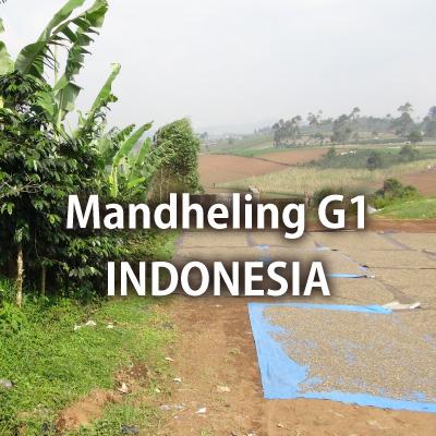 インドネシア マンデリン G-1