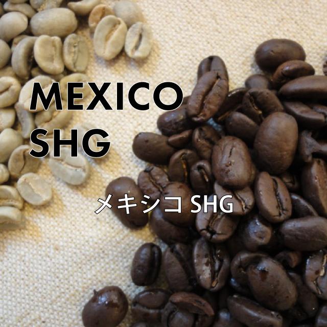 メキシコSHG