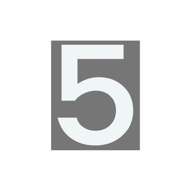 ジスラインS(加熱溶融接着)5番
