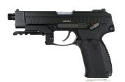 Raptor MP-443 Custom
