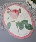 2020年  ルドゥーテ オーバル壁掛けカレンダー 薔薇 令和2年度 13枚つづり 日本製
