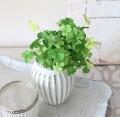 クローバーピック 四つ葉 クローバー グリーン ナチュラル 造花 シルクフラワー アーティフィシャルフラワー インテリアフラワー