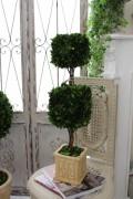 ボックスウッドのトピアリー(スクエア2段) ツゲボール ツゲのトピアリー 柘植 プリザーブドフラワー シャビーシック アンテ