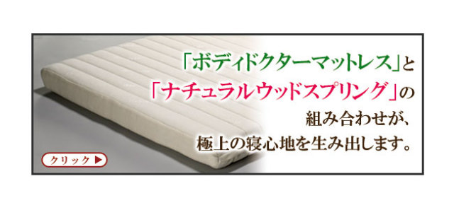 ボディドクター「レギュラー」02