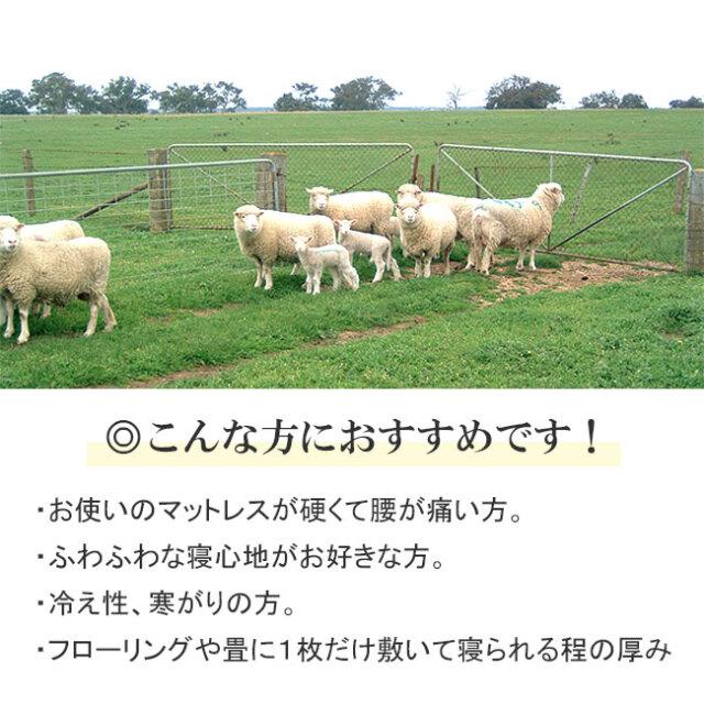 FITLABO厚手羊毛ベッドパッド07