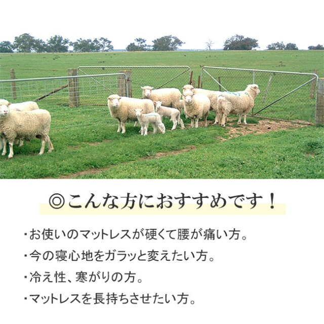 FITLABO羊毛ベッドパッド08
