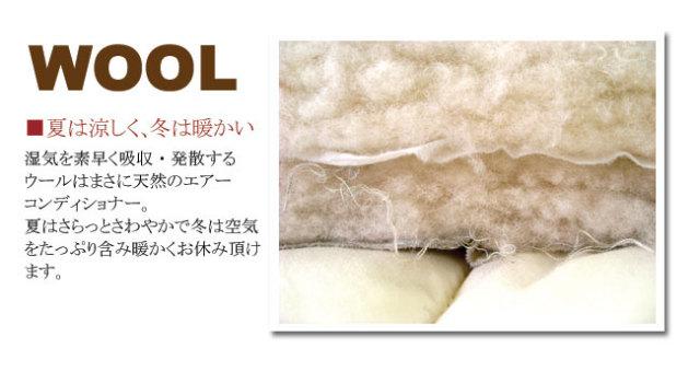 ホロフィル&ウール04