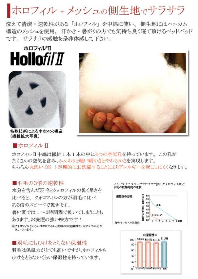 ホロフィル04