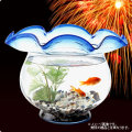 【送料無料】お祭り金魚セットHG