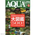 【熱帯魚大図鑑!】アクアリウム専門誌のアクアライフ1月号(2019年)