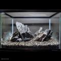 【写真のセットをお届け】青華石 レイアウトセット 45~60cm水槽向け