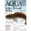 【スネークヘッド特集!】アクアリウム専門誌のアクアライフ6月号(2020年)