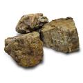 木化石 M