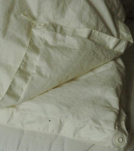 デュエットタイプ羽毛布団