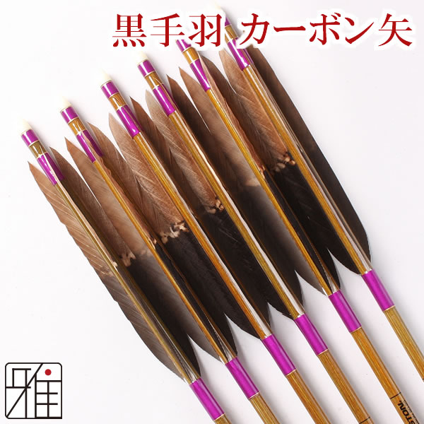弓道 弓具カーボン矢 黒手羽染抜8023|6本組【YA104】