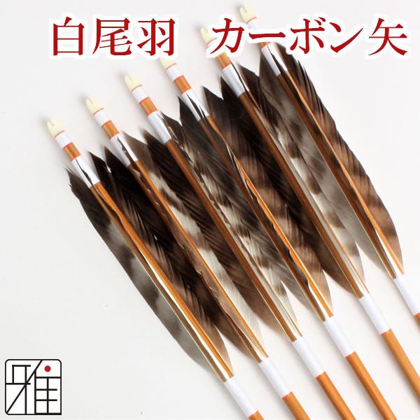 弓道 弓具イーストンカ-ボン矢 黒手羽染抜8023|6本組 【YA163】