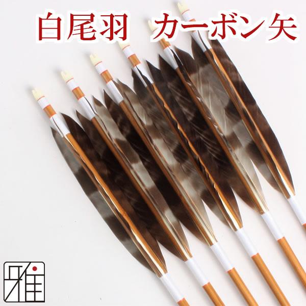 【弓道】【矢】 ミズノカーボン矢 白羽根 尾羽SST BC7520 シャフト 6本組【弓道用カーボン矢】【YA165】