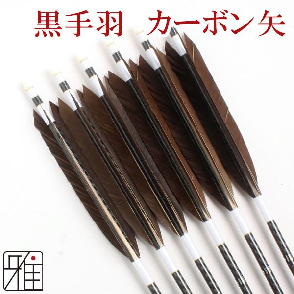 弓道 弓具 ミズノカーボン矢 黒手羽 WENEW 8023シャフト|6本組【YA-170】