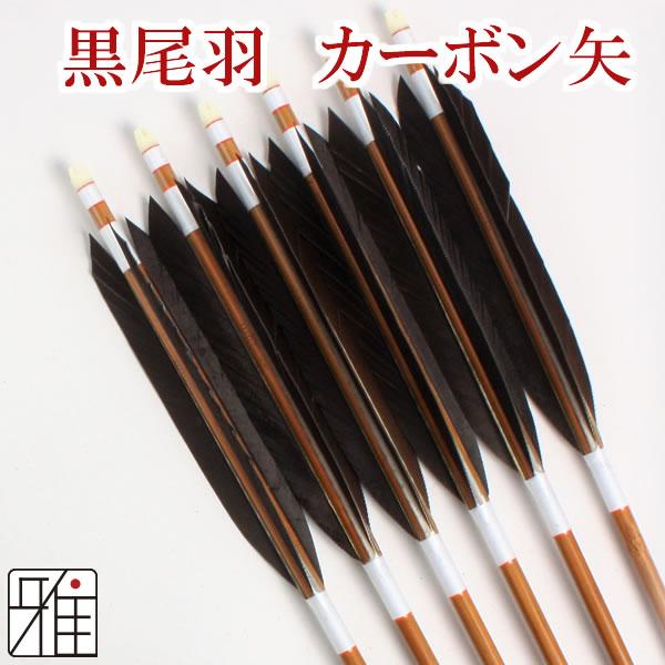弓道 矢 ミズノカーボン矢 黒尾羽 SST-8024BCシャフト|6本組【YA-193】