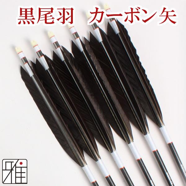 弓道 弓具 ミズノカーボン矢 黒尾羽 SST-8326BMシャフト|6本組【YA195】