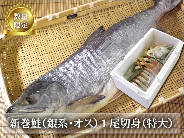 新巻鮭 銀系・山漬・オス 切身1本(特大)