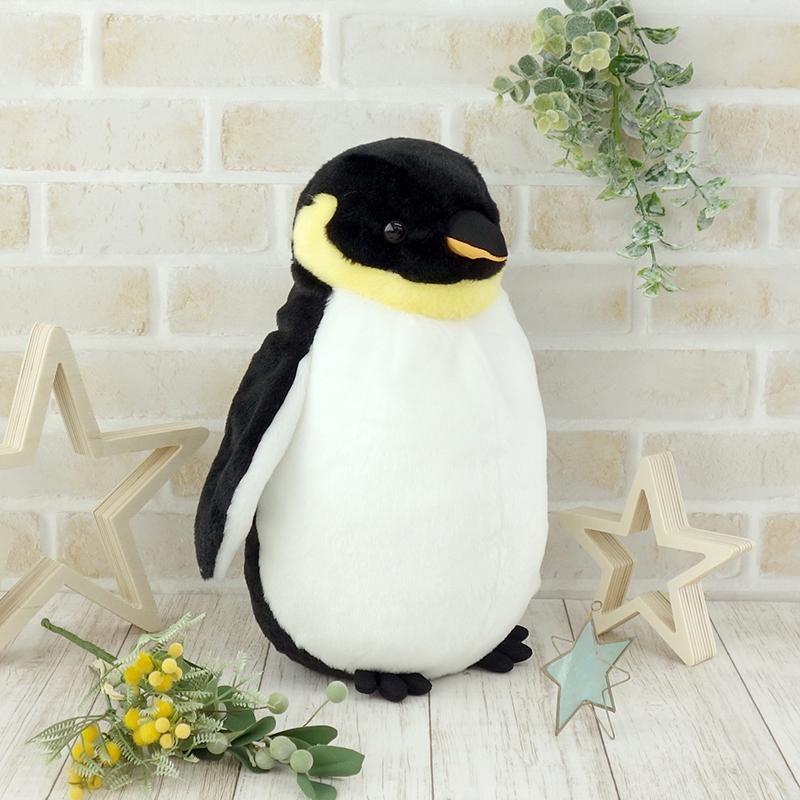 皇帝ペンギン S