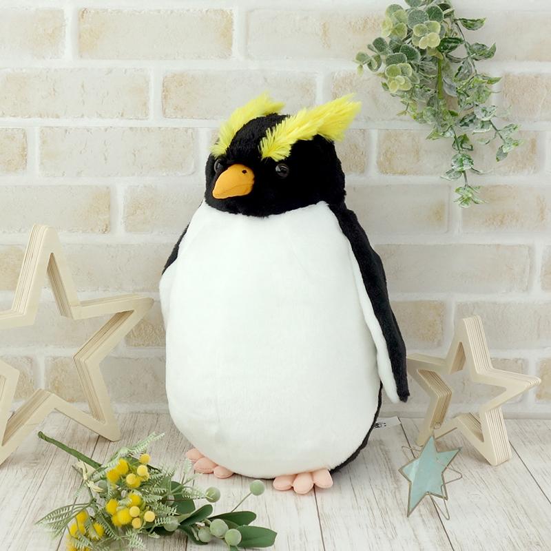 イワトビペンギン S