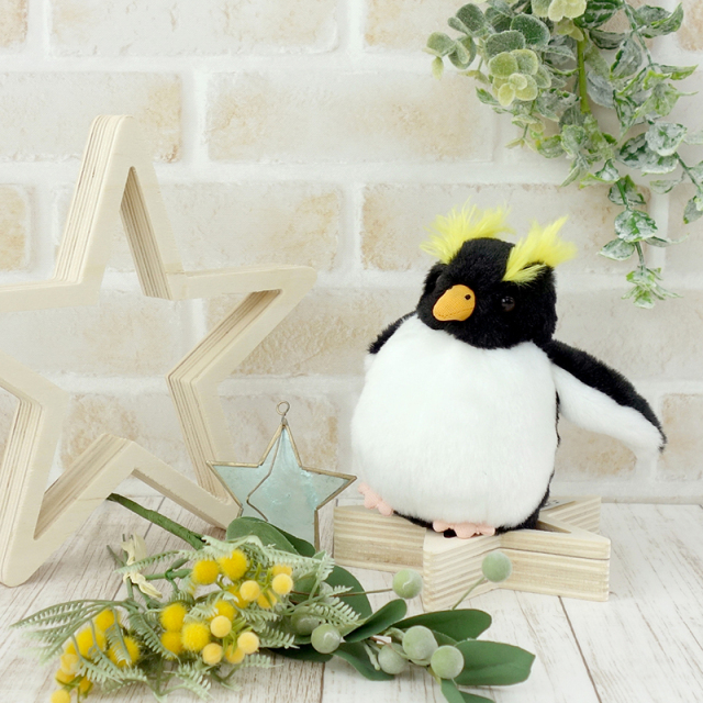 イワトビペンギン お手玉