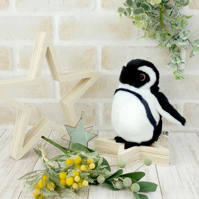 ケープペンギン お手玉