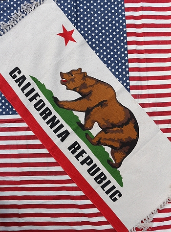 キッチンマット カリフォルニアラグマット アメリカ雑貨屋 サンブリッヂ 通販
