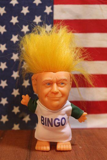 トランプ大統領 ドナルドトランプ トロール人形 トランプグッズ アメリカ雑貨屋 サンブリッヂ 通販