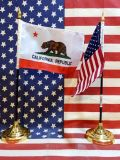 ミニ星条旗 モニカリフォルニア国旗 世田谷ベース アメリカ雑貨屋 サンブリッヂ