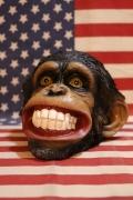 モンキーヘッドバンク さるの貯金箱 リアル動物 猿の頭 アメリカ雑貨屋 サンブリッヂ