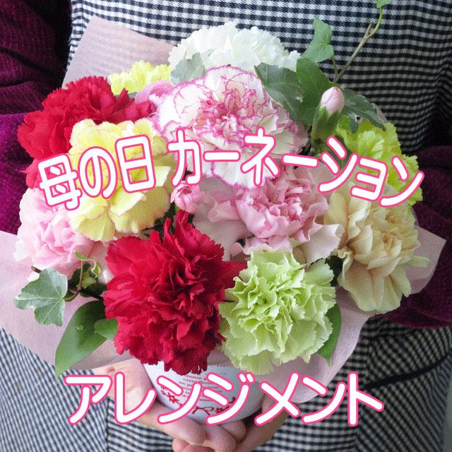 母の日 ギフト プレゼント カーネーション フラワーアレンジメント