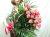 バラ花束ピンク