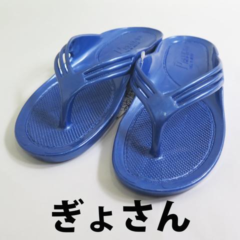 PEARL(パール)/ギョサン 【ぎょさん 鼻緒3本タイプ】 メンズ/ブルー