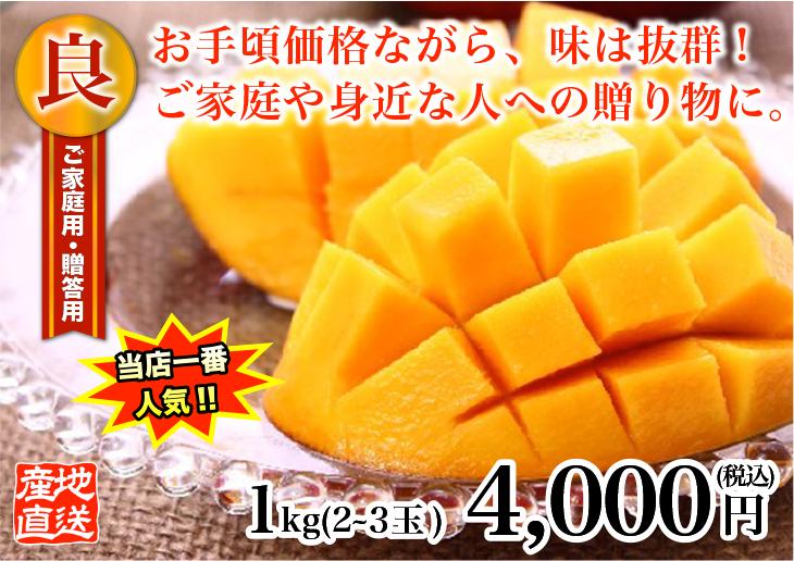 良品級サンサンマンゴー1kg