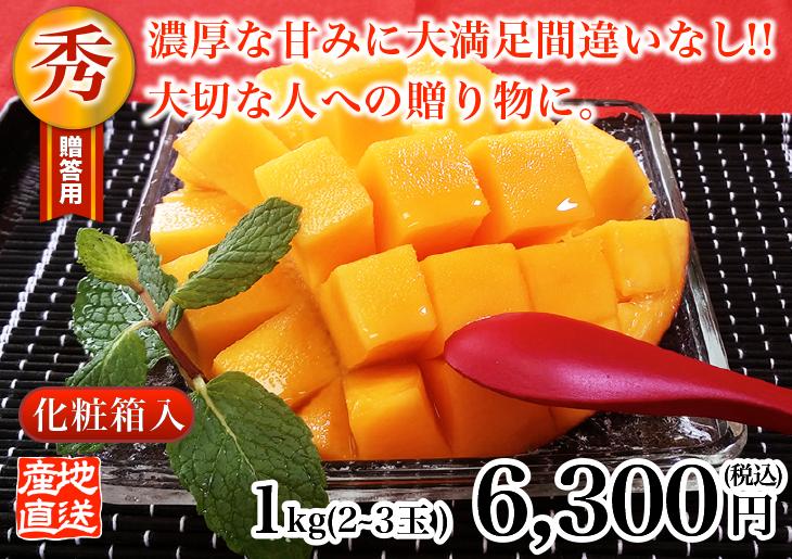 燦々マンゴー 秀1.0kg